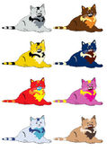 Cats in different color