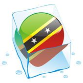 Fully editable vector illustration of saint kitts and nevis button flag frozen in ice cube