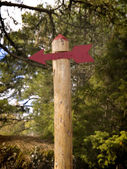 Red Arrow sign in the Forest