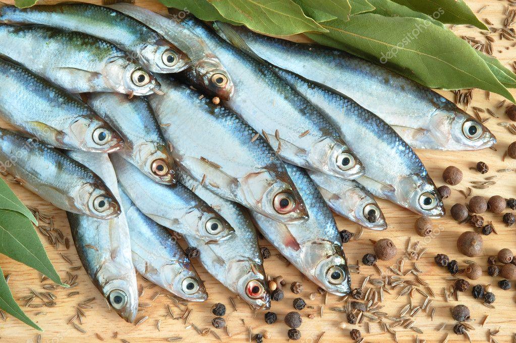 defneyaprağı balığı ile ilgili görsel sonucu