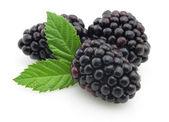 BlackBerry s listy