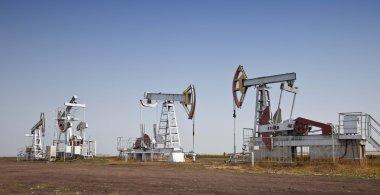 Oil pumps jack in work