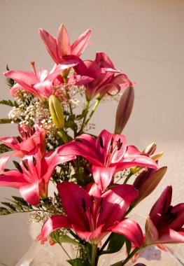Bouquet of pink lilies