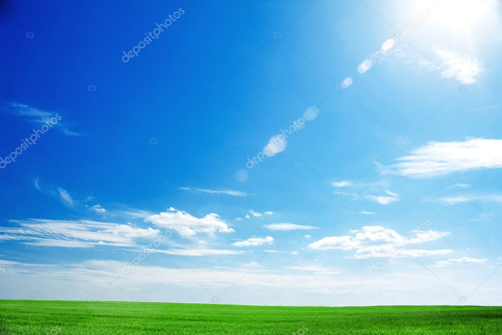 Field of fresh green grass and bright blue sky with the sun causing lens fl