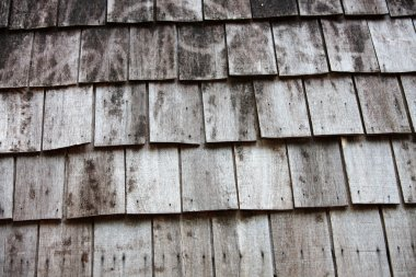 Abstract texture of wooden wall.