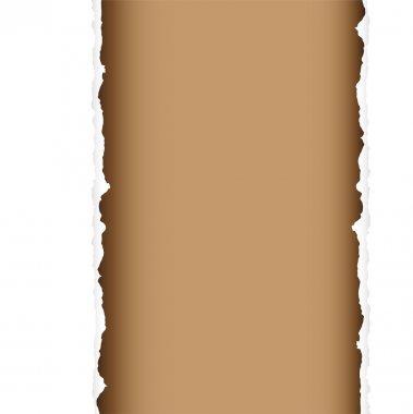 Brown tear divide