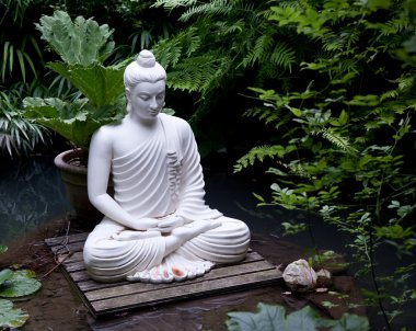 Buddha statue in pond