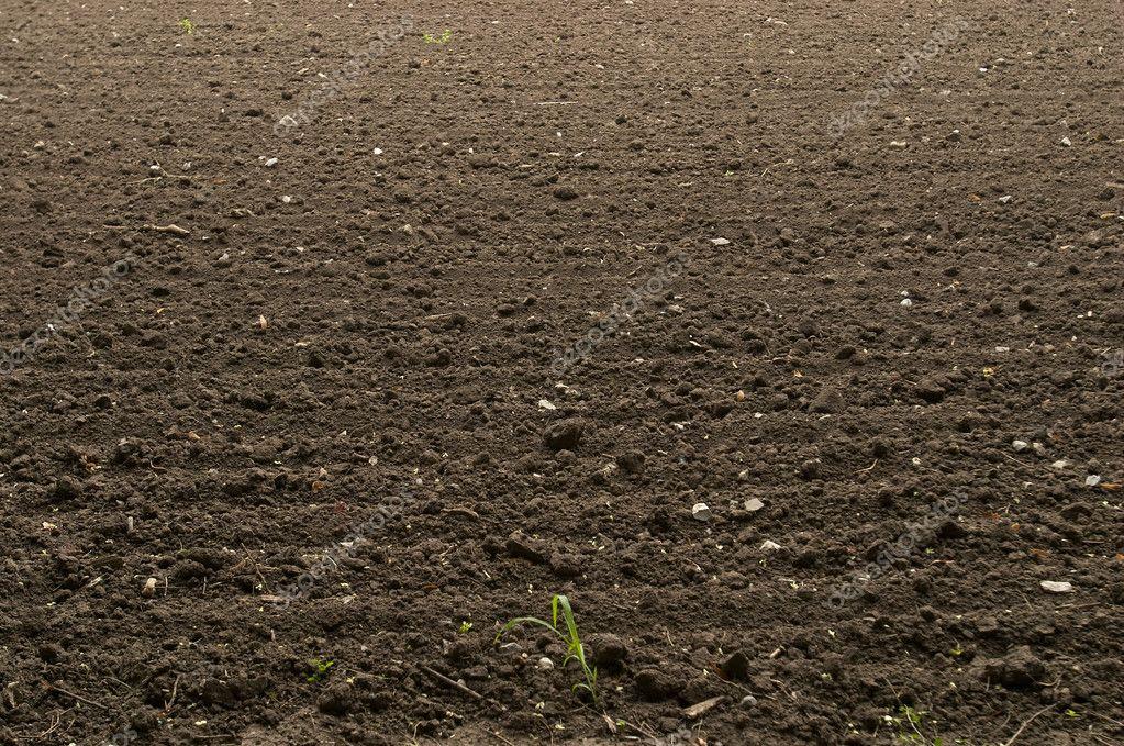 Fondo de suelo de tierra negra fotos de stock grublee for Tierra suelo wallpaper