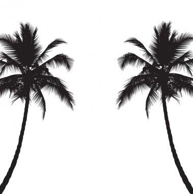 Two black silhouettes of palm trees