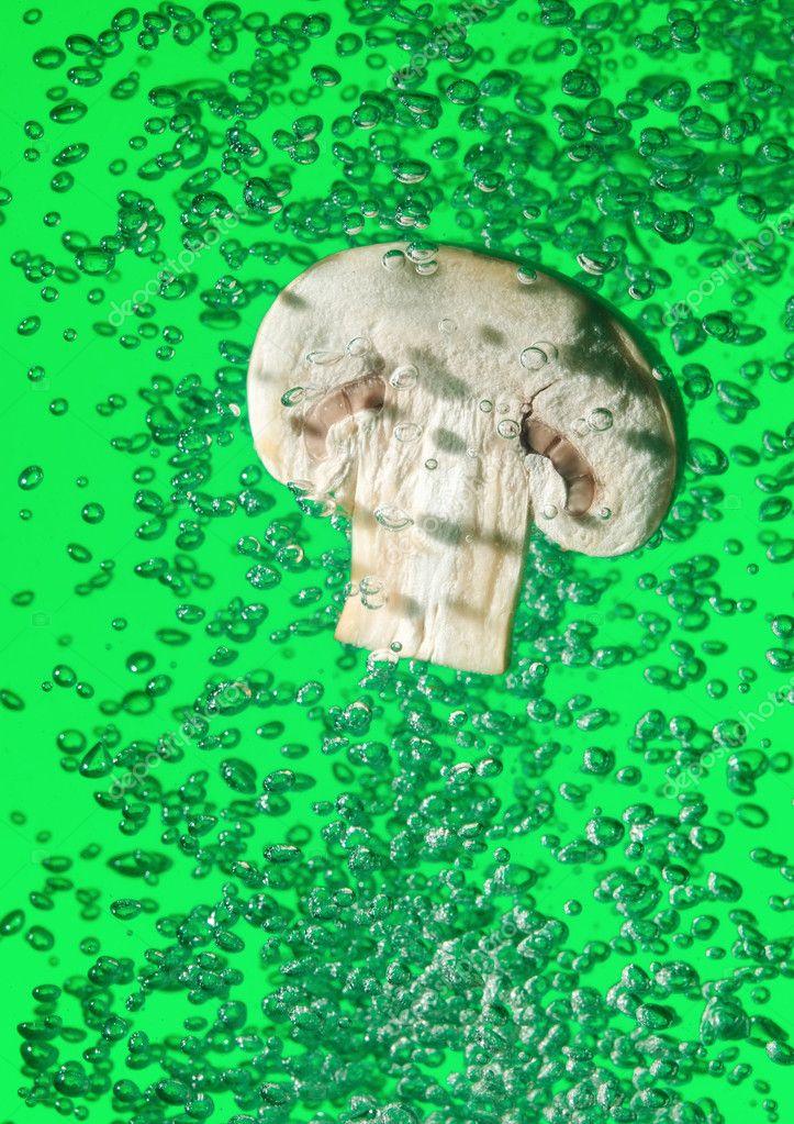 Field mushroom falling in water