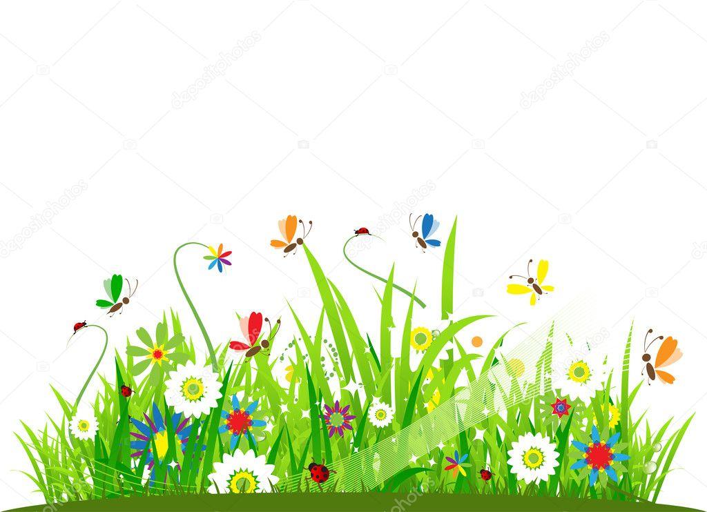 Summer meadow beautiful