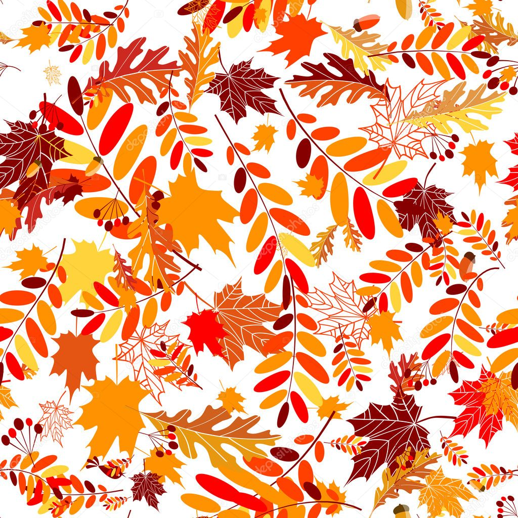 Fondo transparente para su dise o de hojas de oto o - Descargar autumn leaves ...