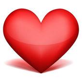 izolované srdce