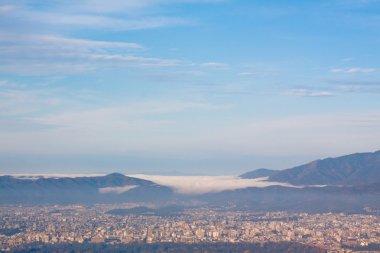 City top view