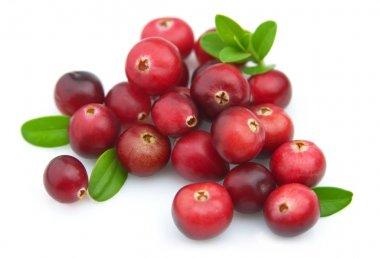 Ripe cranberry