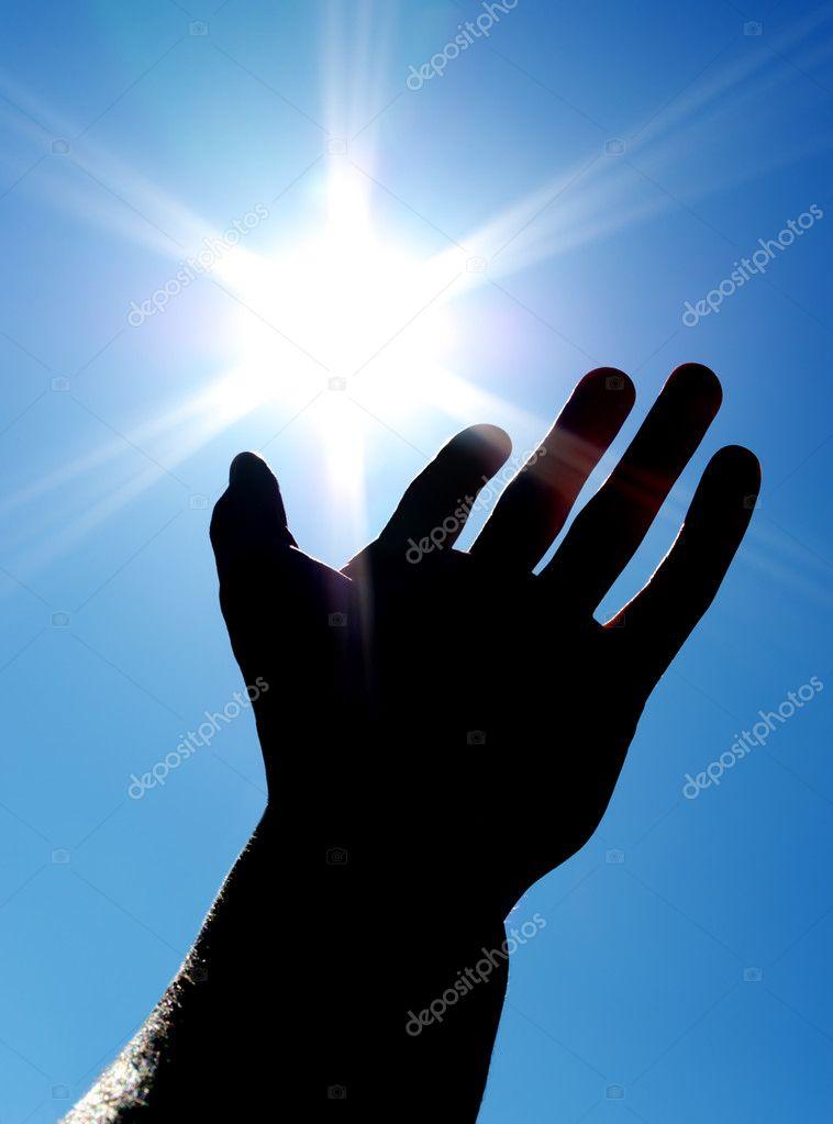 Sun on the palm