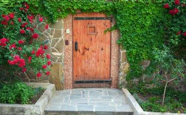 Red, beautiful door of home. Exterior design. stock vector