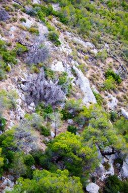 Mount Olympus - highest peak in Greece