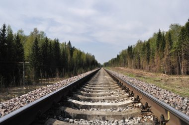 Railway track in forest