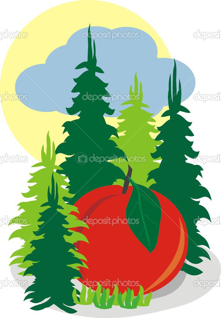Fairy Big Apple in the fir forest
