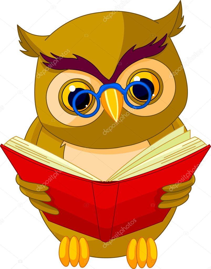 Mądra sowa kreskówka — Wektor stockowy