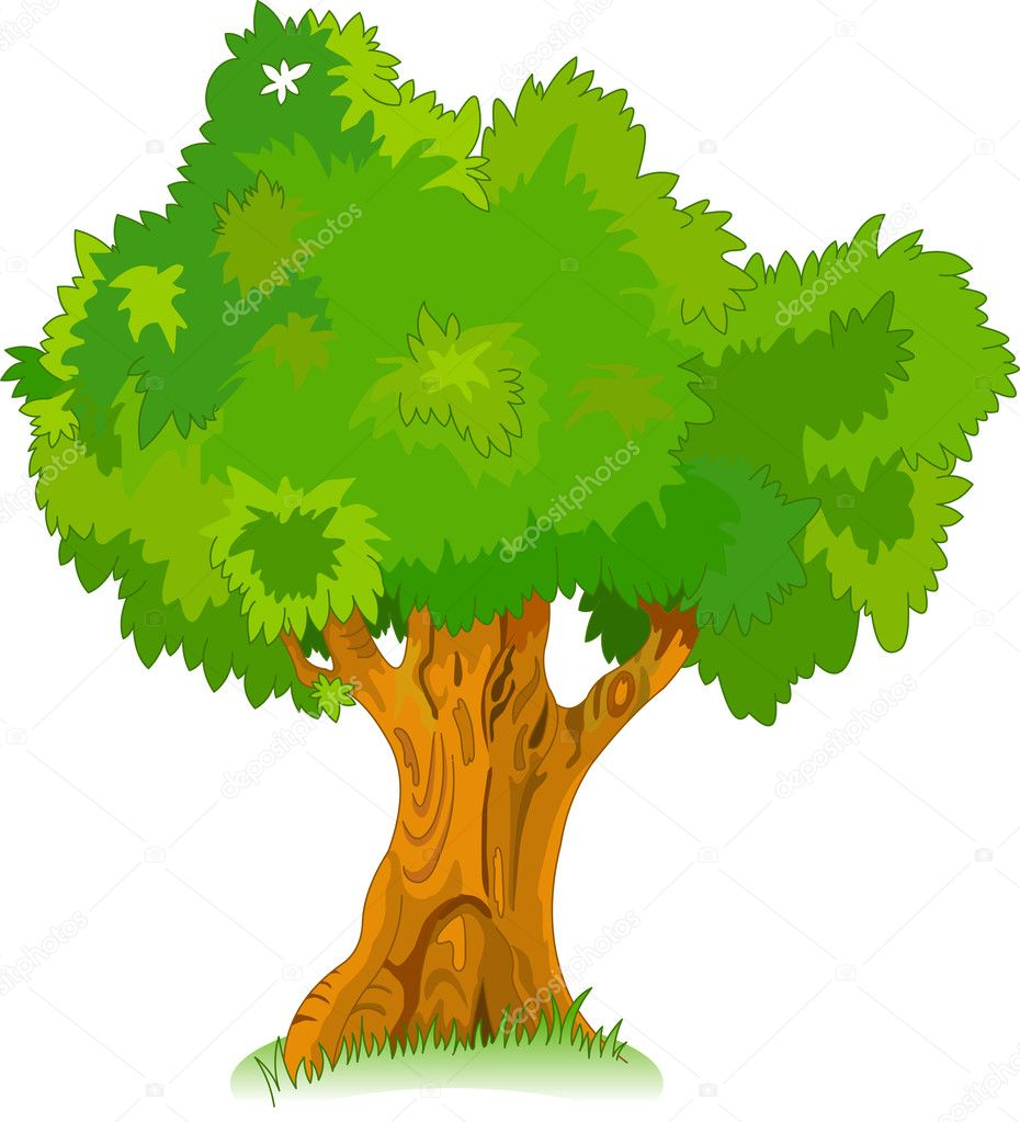 Great old tree for your design