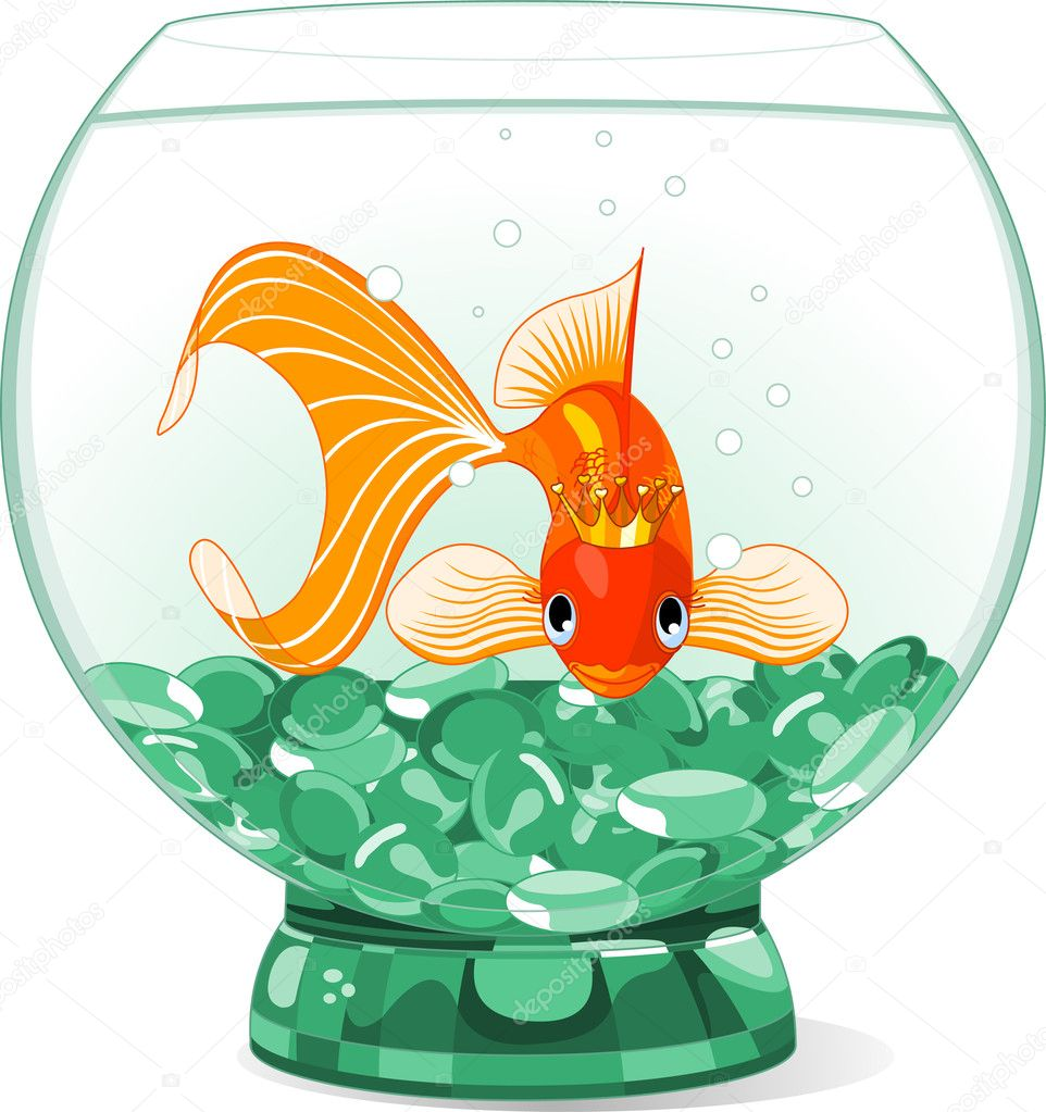 Reine poisson rouge dessin anim dans l 39 aquarium image for Aquarium poisson rouge dessin