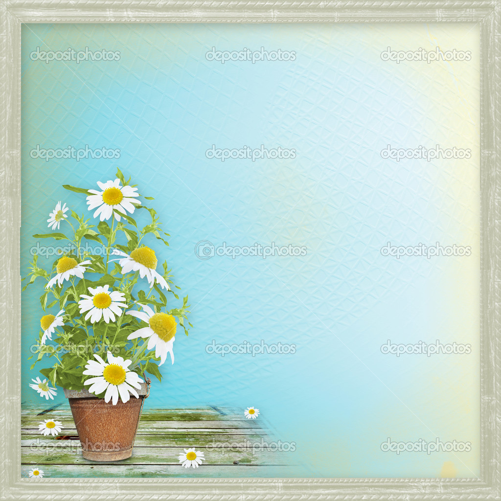Grunge paper with beautiful bunch of daisy for design