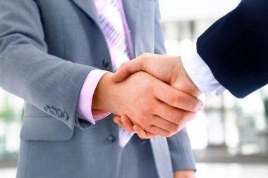 Handshake isolated in office stock vector