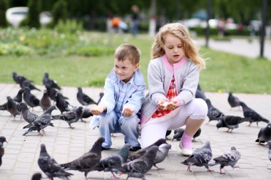 Children playing with doves