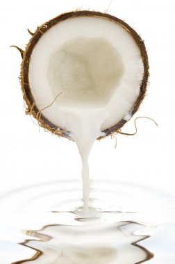 Coco nut isolated