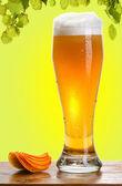 Pohár sört és komló