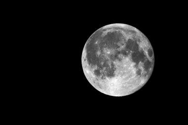 Full Moon 4