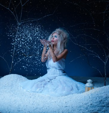 Frozen fairy