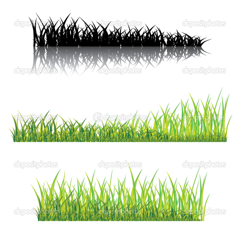 Realistic grass on a white background