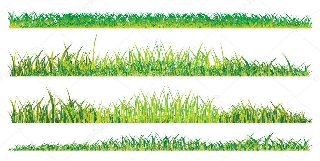 Realistic summer grass