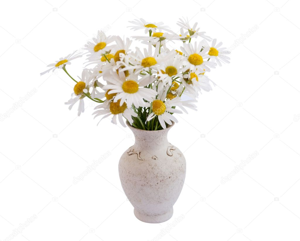 Vase of daisies stock photo ksena32 3471566 vase of daisies stock photo reviewsmspy