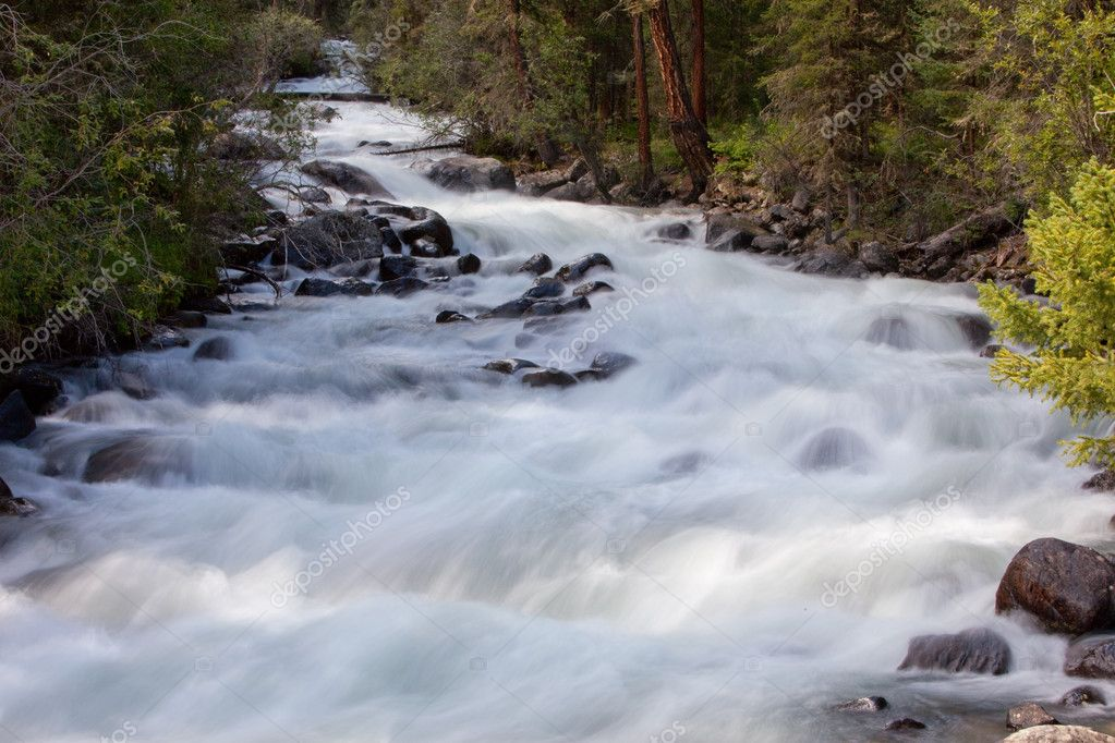 Mountain river. fast stream water. summer landscape