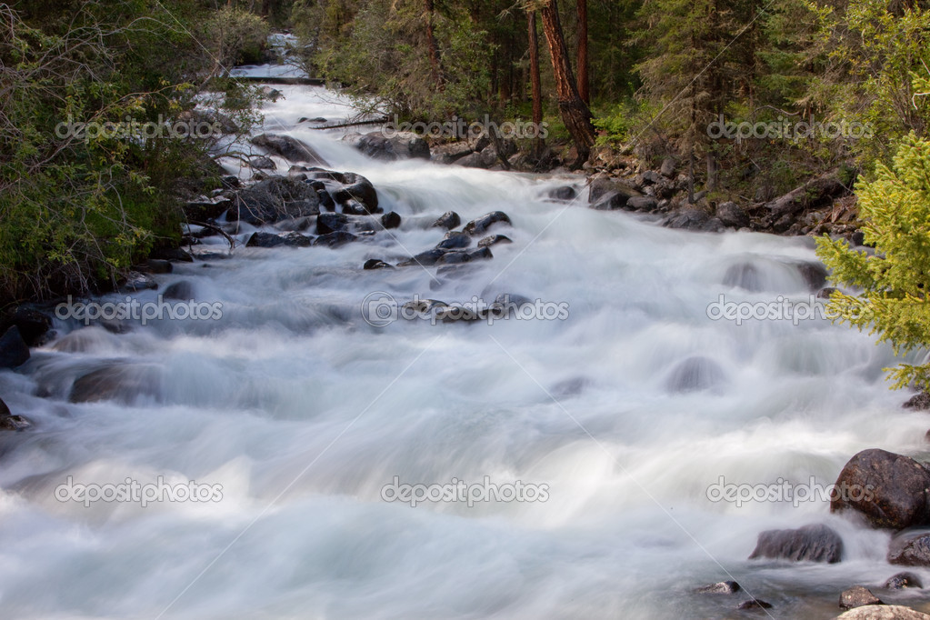 Фотообои Mountain river. fast stream water. summer landscape