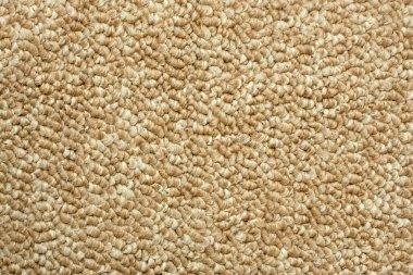 A beige carpet texture