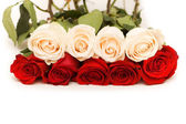 https://static4.depositphotos.com/1000975/269/i/170/depositphotos_2695030-stock-photo-red-and-white-roses-isolated.jpg