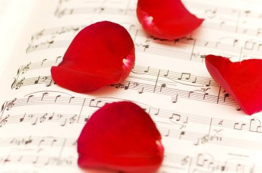 Red rose petals on musical notes