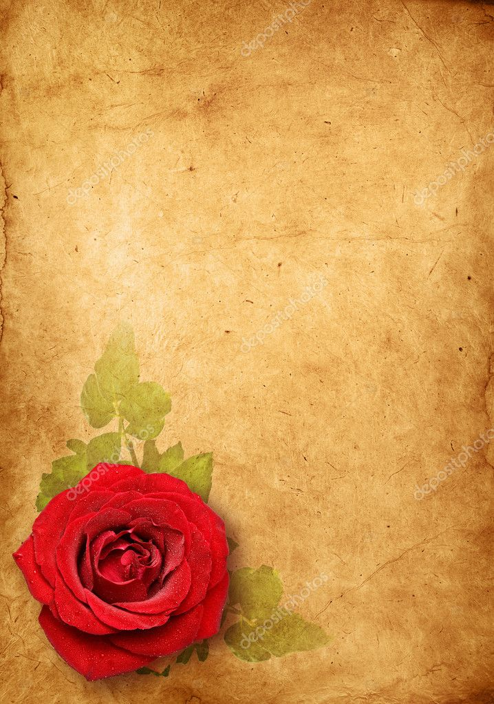 Old paper background, vintage rose — Stock Photo © Irochka ...