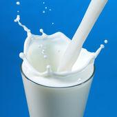 nalil mléko v izolované sklo