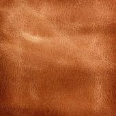 Fotografie Leather texture.