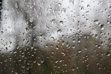 Glass drop water rain