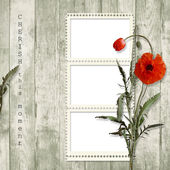 Wooden background with frame and poppy