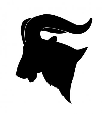 Vector silhouette of the mountain ram on white background