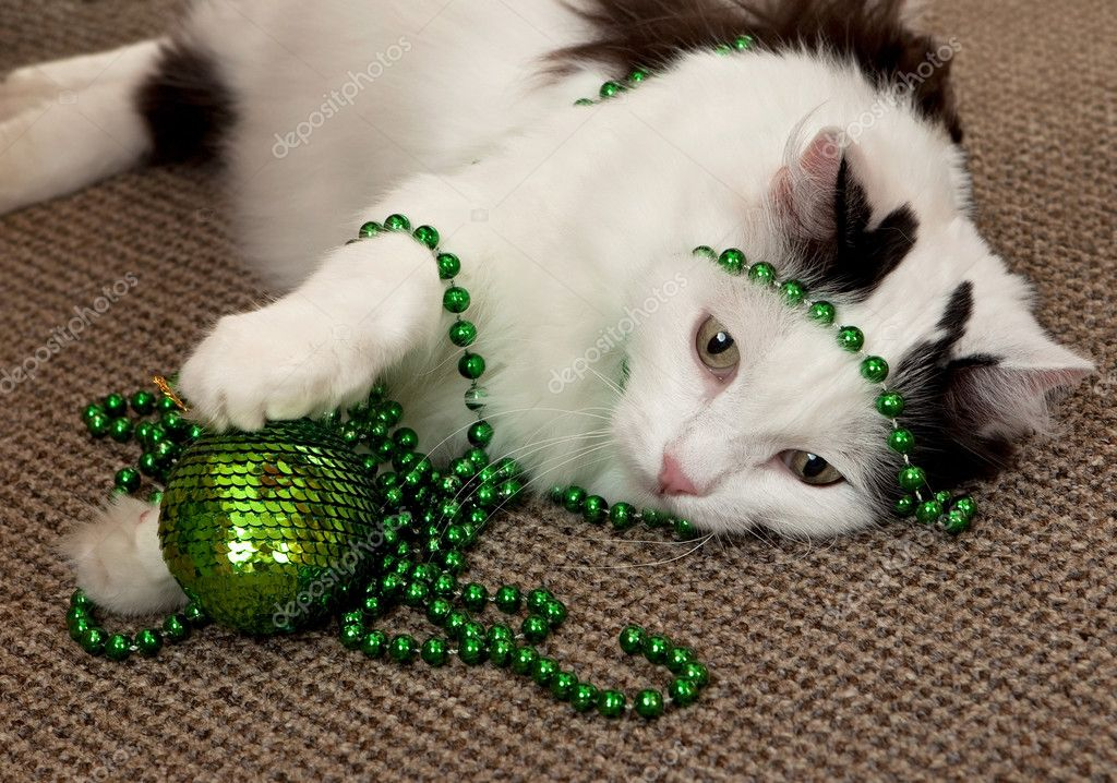 Cat with a New Year's decorations.