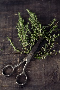 Thyme and scissors